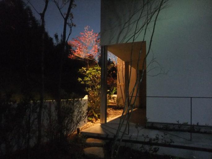 植栽・アイアン・コンクリートで魅せる外構 生駒市 H様邸6